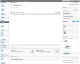 WordPress post window