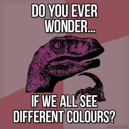 Philosoraptor on perception