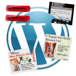 A shiny WordPress logo, ruined by obnoxious ads.