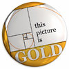 'This picture is gold' badge