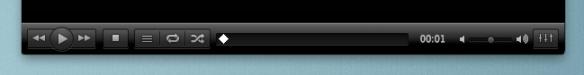 VLC 2.0 controls