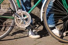 Sofia Pedals